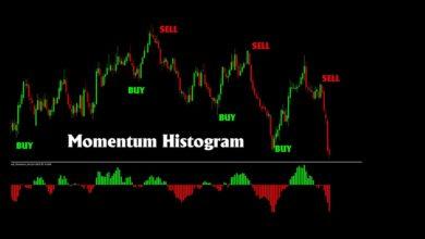 Photo of Hướng dẫn sử dụng chỉ báo Momentum chi tiết – Momentum Histogram
