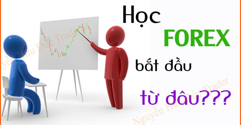 Photo of Học Forex bắt đầu từ đâu? Học Forex cho người mới bắt đầu?