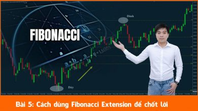 Photo of Cách dùng Fibonacci mở rộng (Fibonacci Extension) để chốt lời (Bài 5)