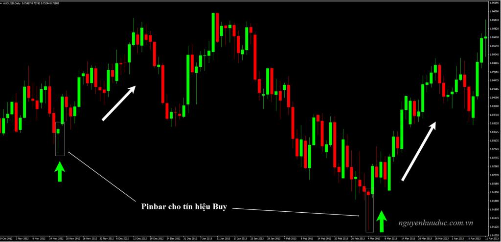 Biểu đồ AUDUSD , khung thời gian D1, Pinbar cho tín hiệu Buy